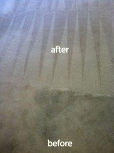 Spring -Carpet-Cleaning-Carpet-Cleaning