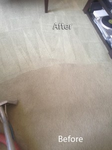 Spring -Carpet-Cleaning-Company