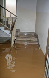 Spring flood-in-house