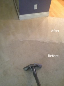 Steam-Carpet-Cleaning-Spring